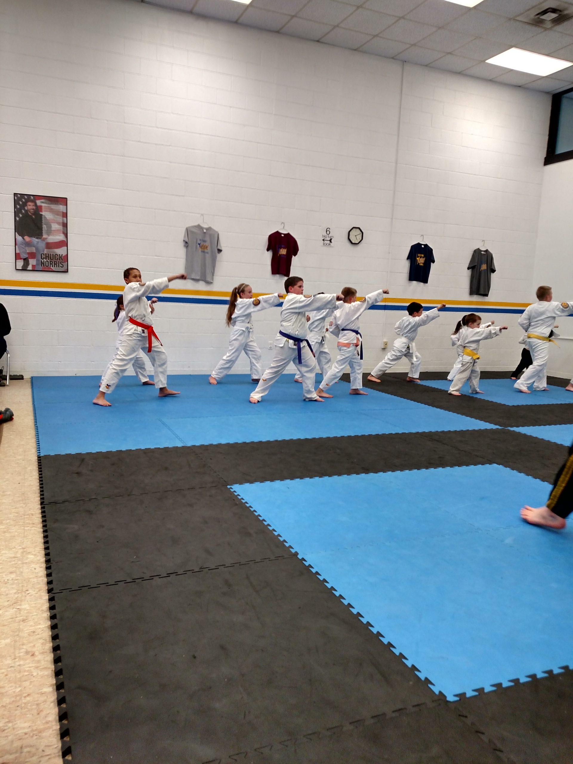 Cannon Karate Kids Classes